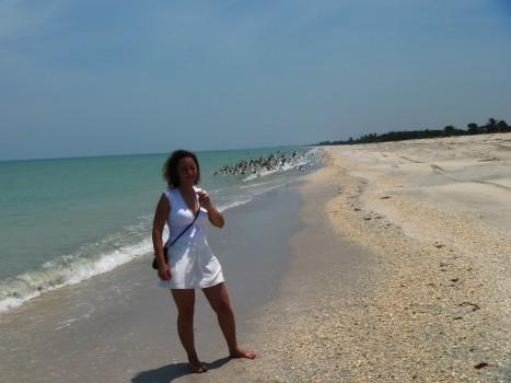 dziewicza plaża