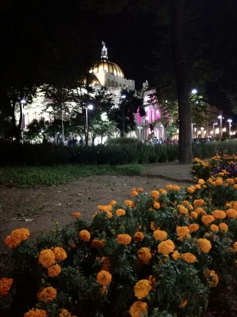swieto-zmarlych-miasto-meksyk