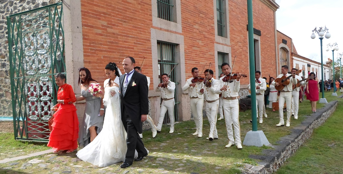 mariachi-na-slubie